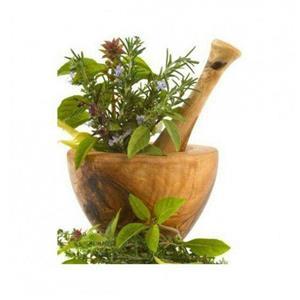 آشنایی با چهل گیاه