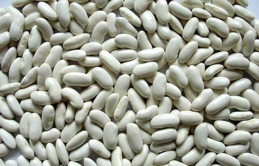 لوبیا سفید چیست و چه فوایدی برای بدن دارد؟