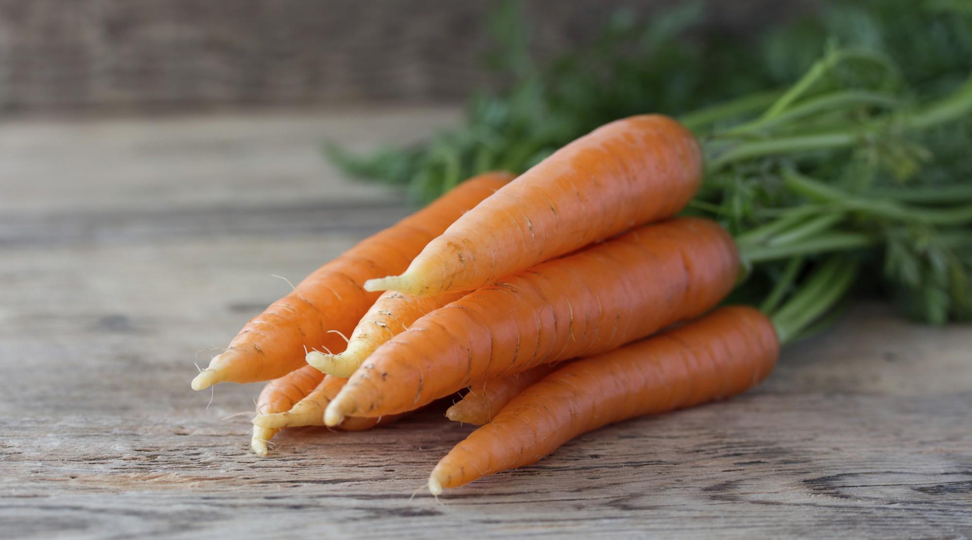 خواص هویج برای سلامتی و آشنایی با انواع هویج