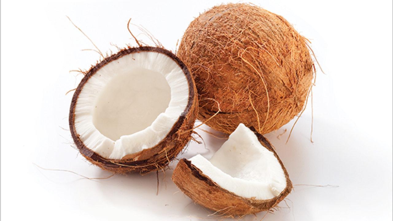خواص نارگیل، آب و شیر نارگیل و کاربردهای آن